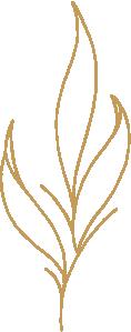LEAVES logo-GOLD.png