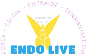 Carnet spécial : l'endométriose - L'association ENDOlive FEES