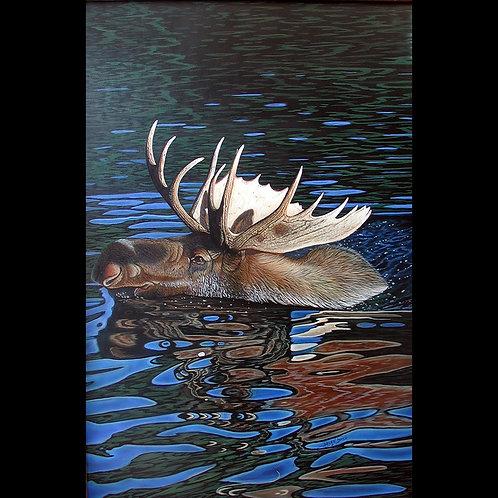 Painting - Steven Boyd