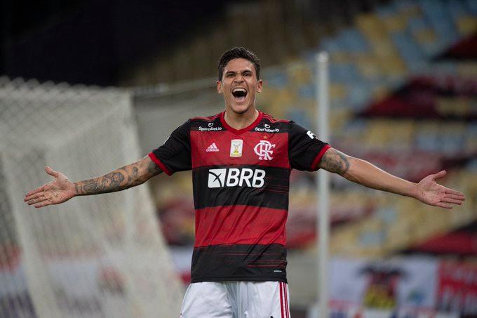 Pedro celebra mais um gol. (Foto: Flamengo)