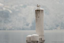 neve a Lugano