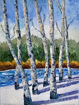 Aspen Trees in Winter.jpg