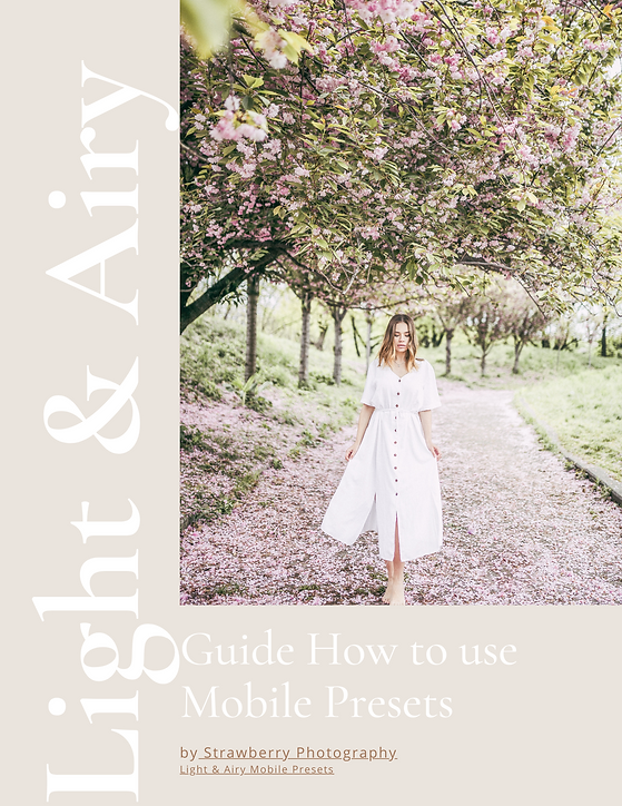 GUIDE LIGHT-AND-AIRY-MOBILE-PRESETS-STRA