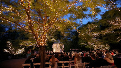 wedding outdoor tree lighting