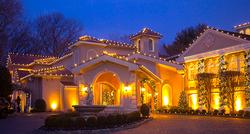 classic white christmas lights