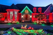 holiday landscape lighting.jpg