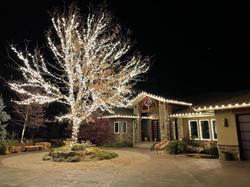 tree lighting residential holiday lighti