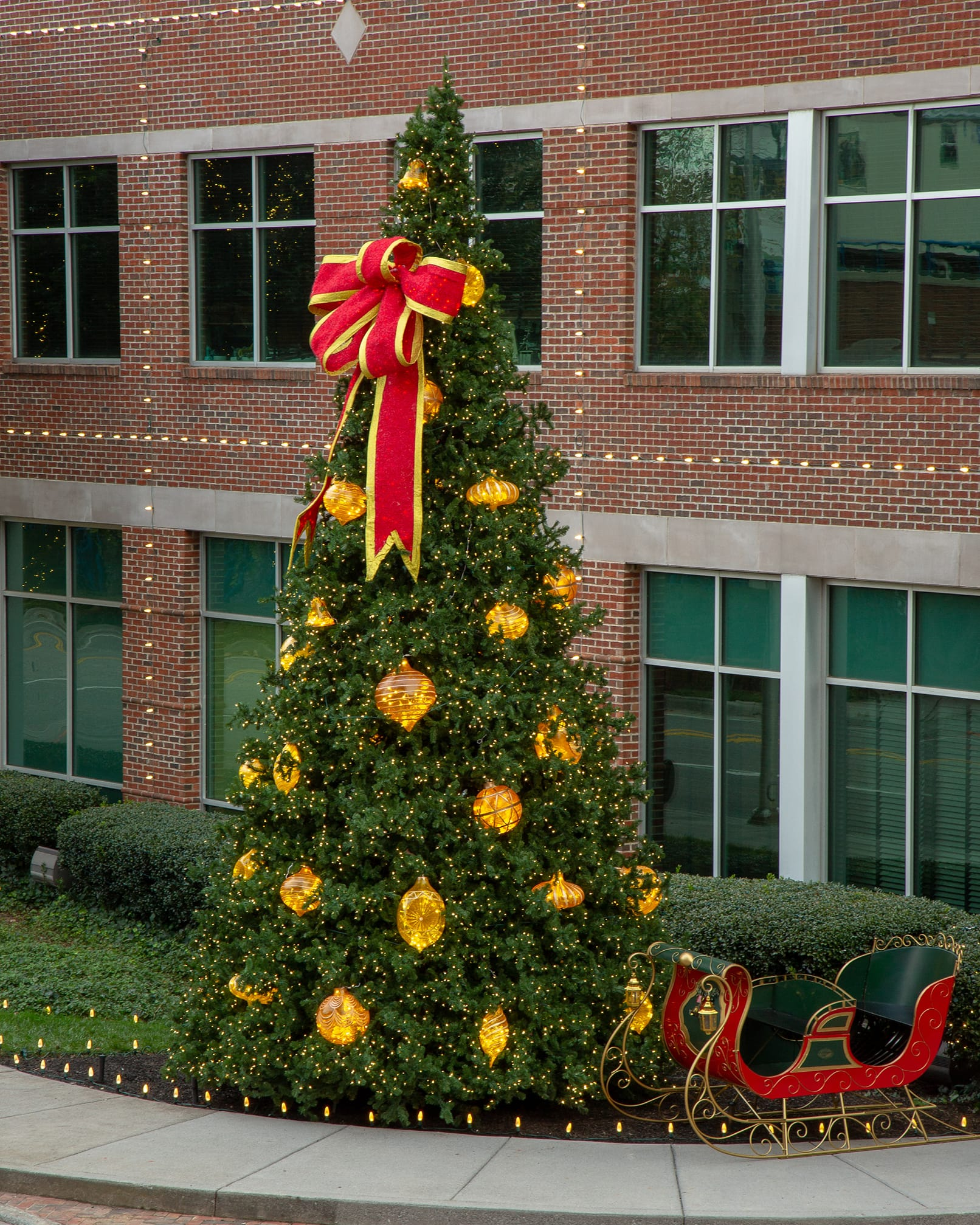 large commercial christmas tree christma