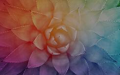 Blog_Background_Harmonic_Egg.jpg