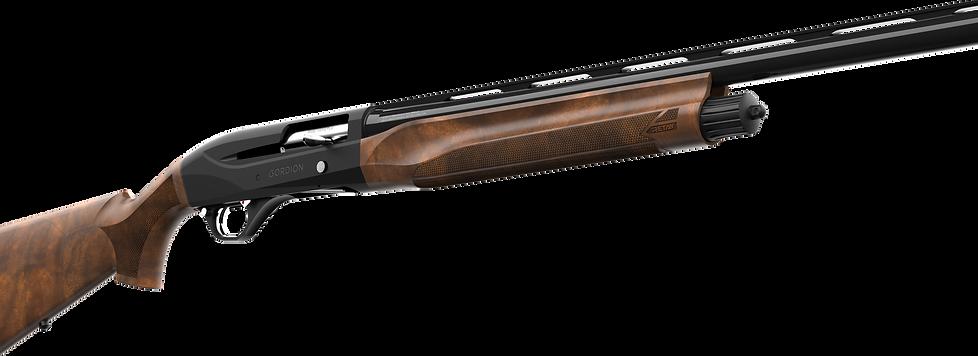 Retay Gordion Shotgun Cutaway-3-copy1.pn