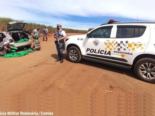 Polícia Rodoviária apreende mais de 490 quilos de maconha