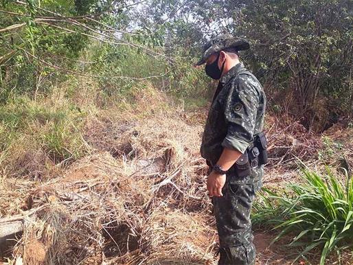 Tupã: Polícia Ambiental adverte dona de chácara por retirada de árvores nativas