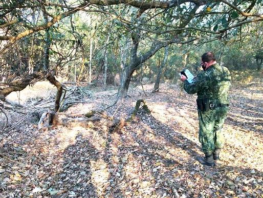 Queiroz: Polícia Ambiental aplica multa de mais de R$ 30 mil por danos à vegetação nativa