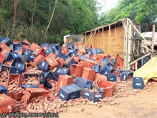 Caminhão tomba, espalha carga de batata e interdita rodovia