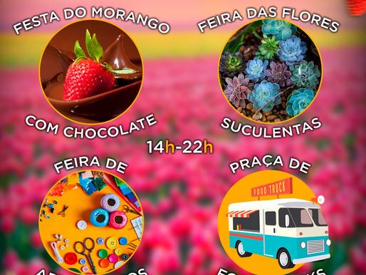 CASA DO GAROTO: 1º Festival da Primavera
