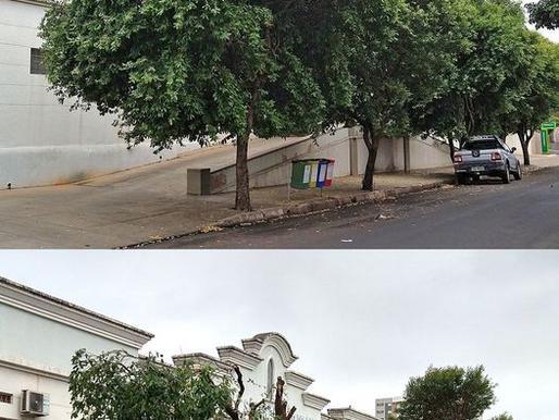 Denúncia aponta indícios de irregularidades na poda e extração de árvores em Tupã