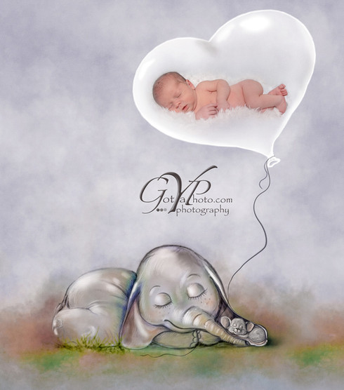 Rainbow Baby Infant Photography withElephant
