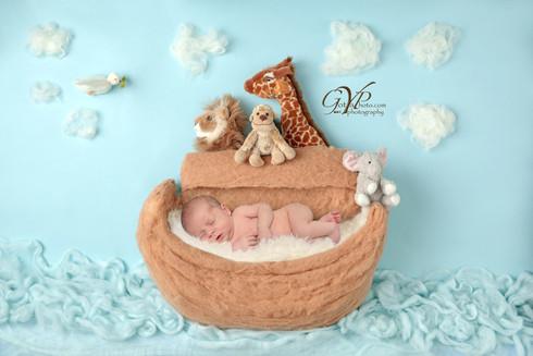 Noah's Ark Rainbow Baby portrait