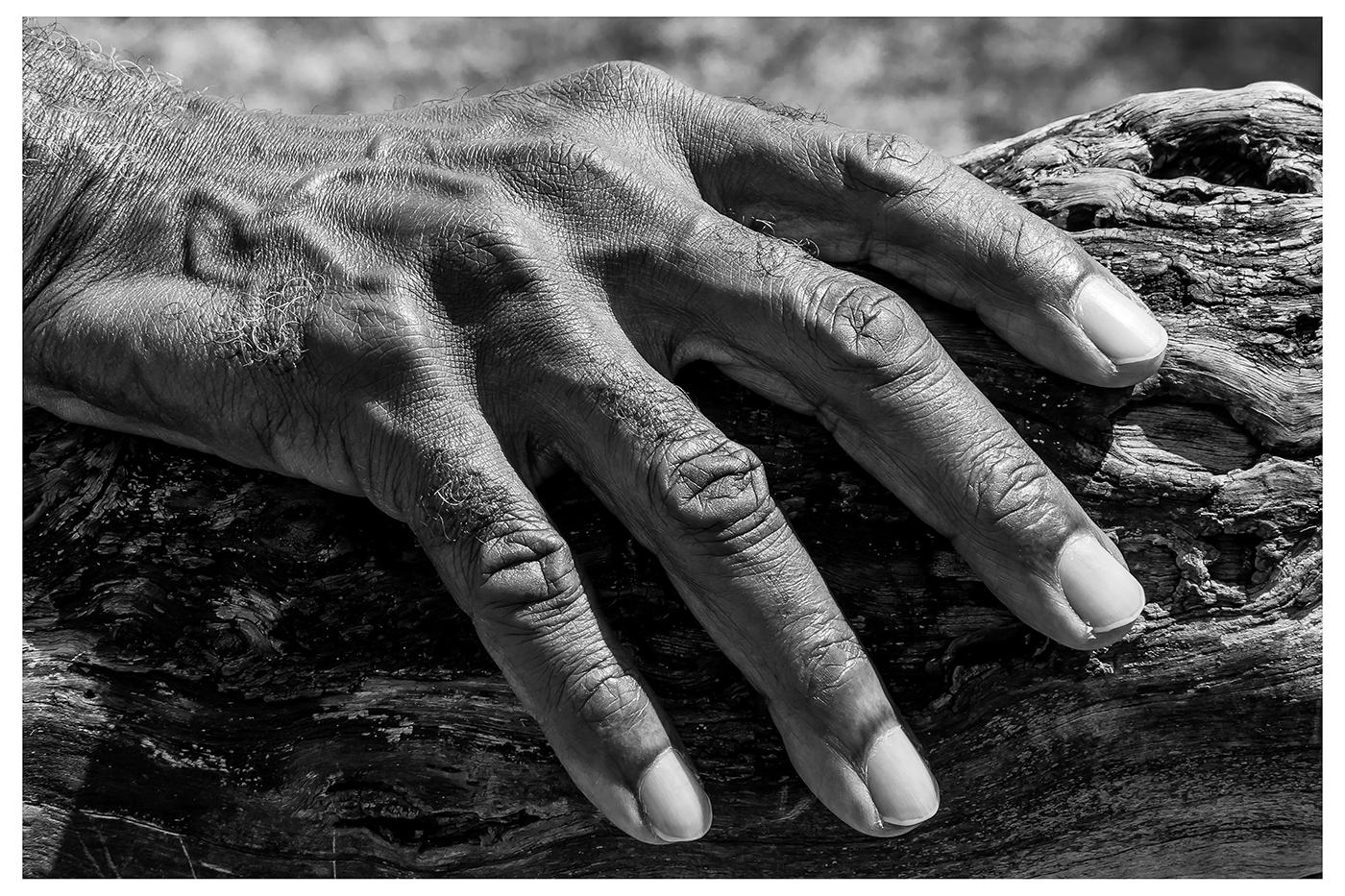 The Hand, Steve Smith