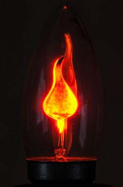 Burning Bright Member, Lyndon Clark