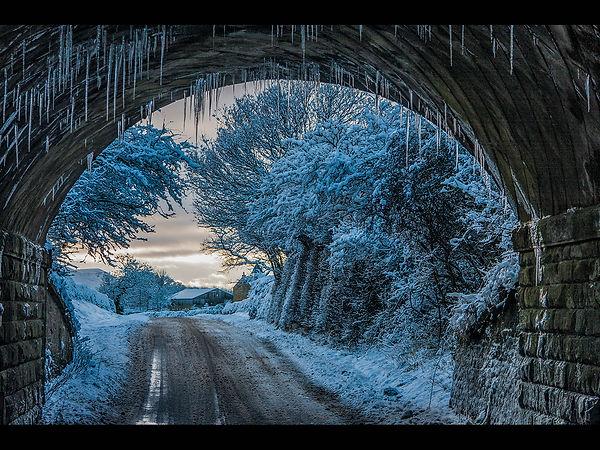 Winter wonder Land- mem69.jpg