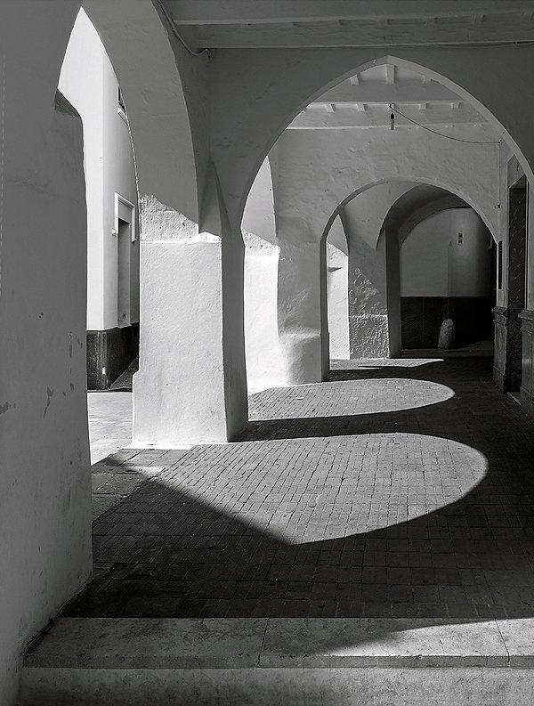 Copy of Light and shade member 77 .jpg