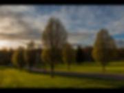 Spring Watch mem 69.jpg