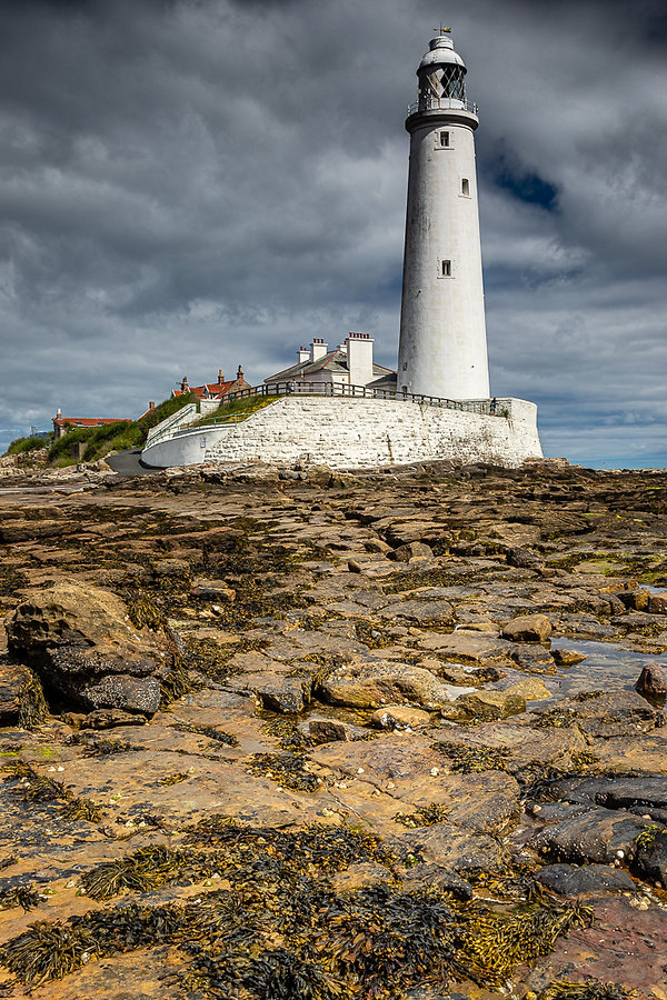 St, Mary's Lighthouse Member 14 .jpg