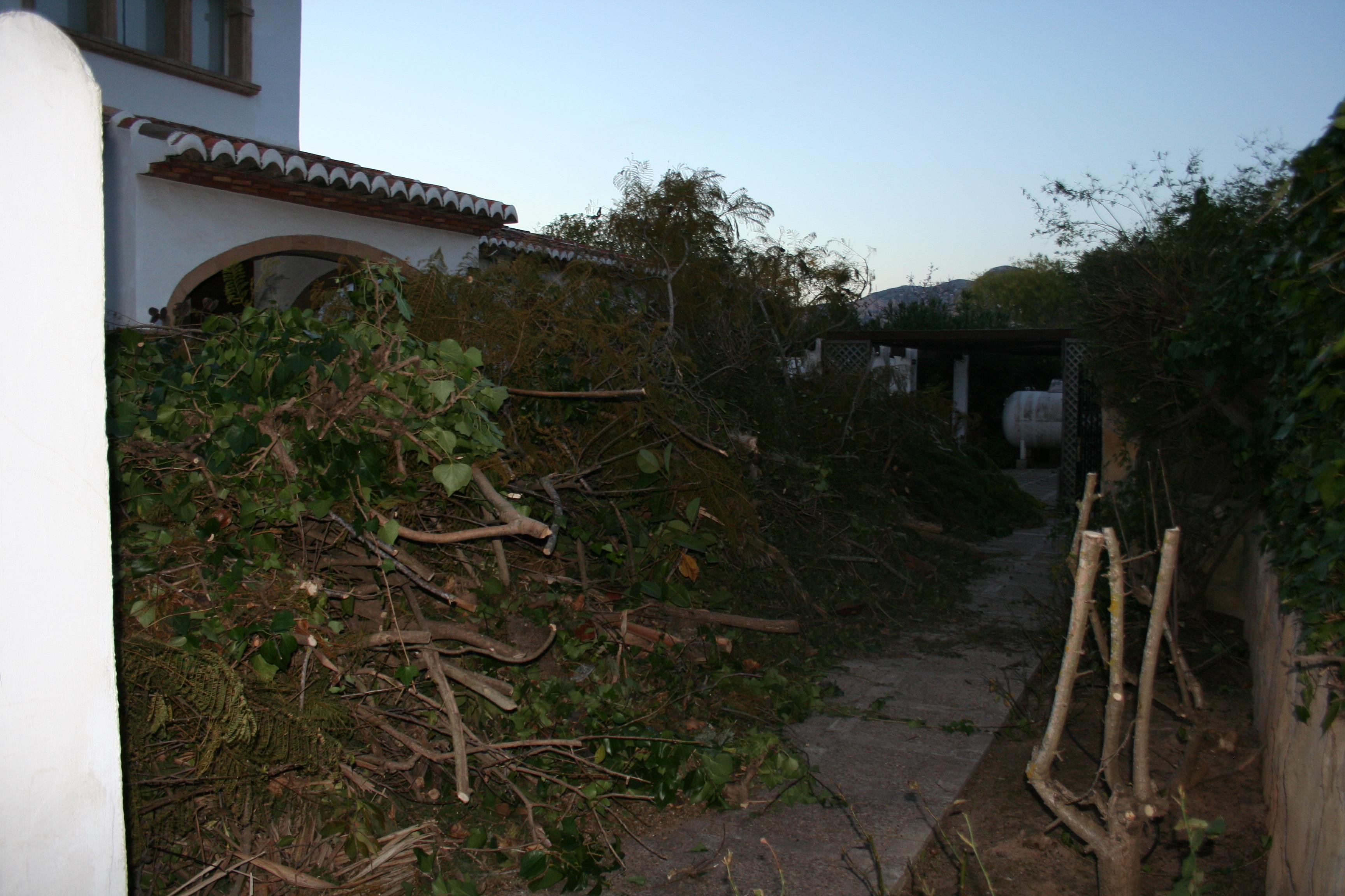 Garden Clearance