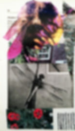 book collage 2.jpg