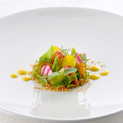 Lobster-and-avocado-with-fruits-salad