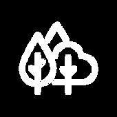 Iconos-PáginaWEB-08.png