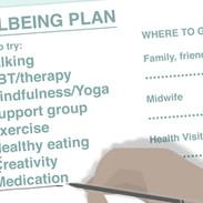 PP_8_make a wellbeing plan.jpg