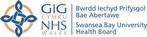 Abertawe_Swansea NHS Health Board 2.jpg
