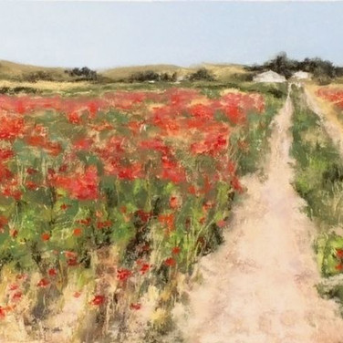 Spanish Poppies, Pastel