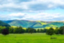 British landscape in Summer.jpg