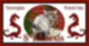 banner2_zimexis.jpg