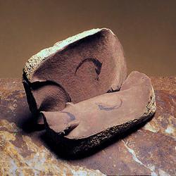 fosiles.jpg
