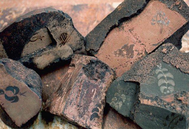 fósiles.jpg