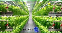 Controlled Environment Agriculture (CEA) 4.0 (Day 1)