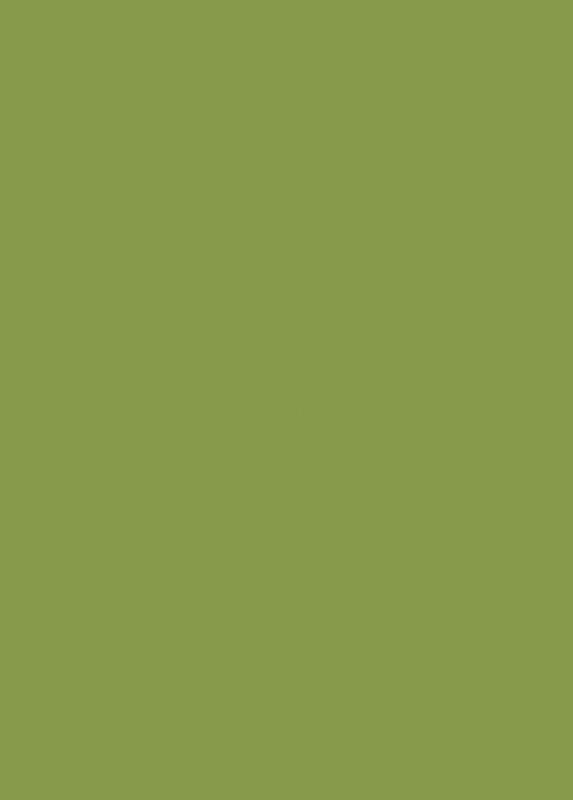 Зелёный киви