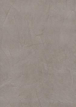Аргиллит серый