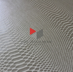 ДЕНИСОНИЯ песчаная.jpg