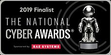 NCA-Finalist-2019-1-768x384.png
