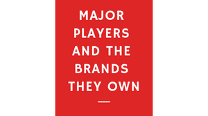 Major Retail pleayers in India and the brands they own