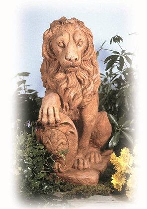 80049 Lion