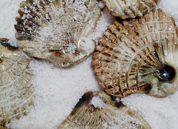 Ceramic scallop shell