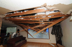 Damage to ceiling from tree