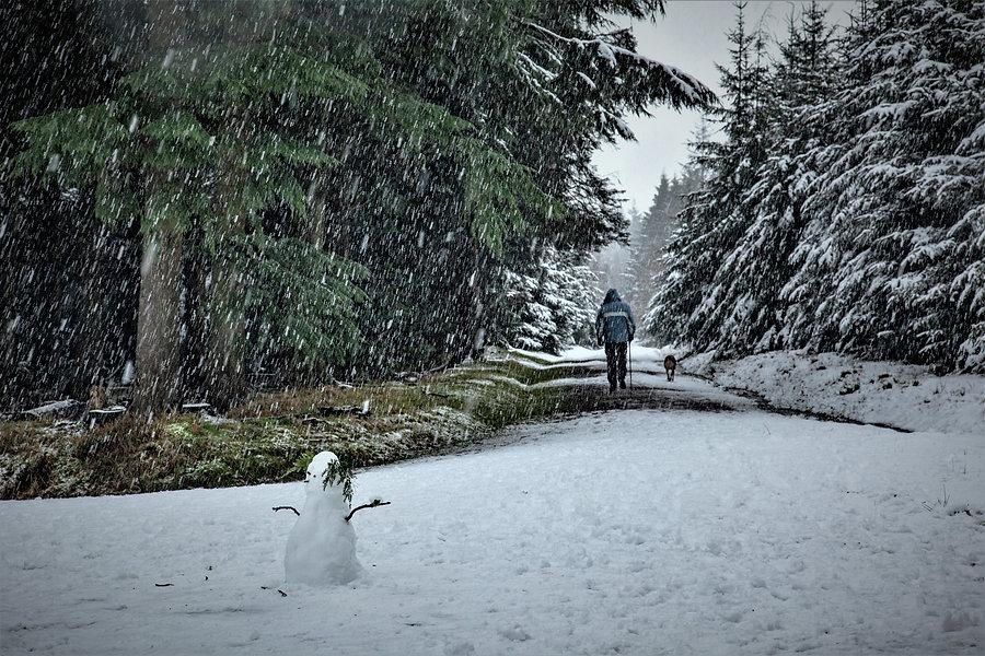 Haldon Lodge with SNOW_21-01-24_0006.jpg