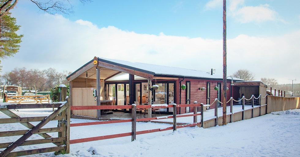 Haldon Lodge with SNOW_21-01-24_0022.jpg